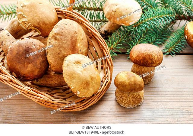 Mushrooms on wooden table. Autumn vegetables