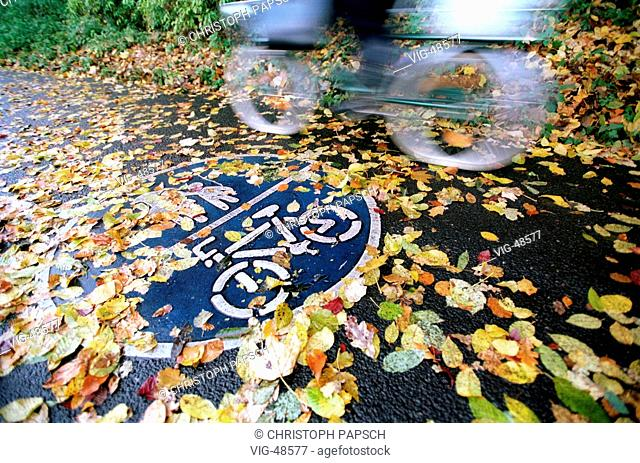 Cycle path covered with wet autumn leaves. - BONN, GERMANY, 10/11/2003