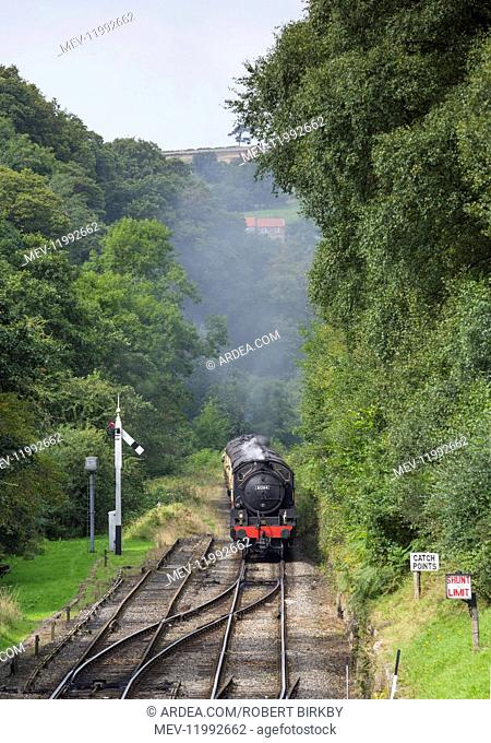 Steam train approaching the station - Goathland, North Yorkshire, UK