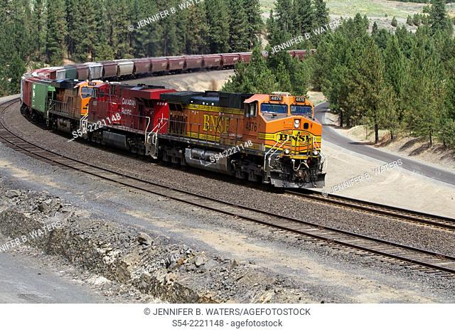A Burlington Northern Sante Fe at Scribner Siding in Marshall, Washington, USA