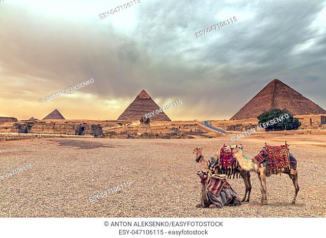 Complex of Giza Pyramids and the Sphinx in the desert with camels, Egypt
