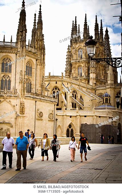 Cathedral view  Burgos city  Castile and Leon, Spain