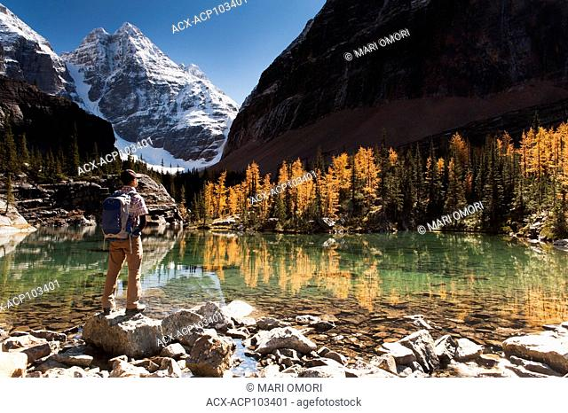 A hiker stands by Lake Victoria along the Lake Oesa Trail in Yoho National Park. Golden larches reflect off the lake. Model Release signed
