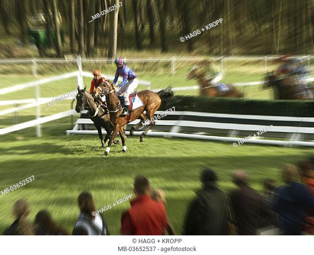 Gallop races, horses, obstacle