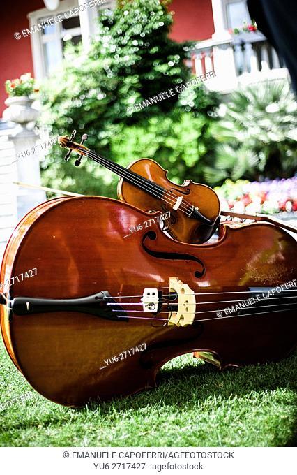 Bass, violin
