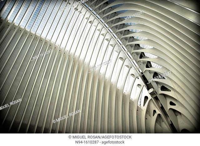 Interior view of the Agora building's roof of the City of Arts and Sciences of Valencia, Valencia, Spain