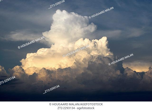 Sky-only view of a towering cumulonimbus cloud in sunset light. Etosha National Park, Namibia