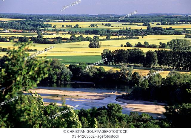 the Loire river around Pouilly-sur-Loire, Nievre department, region of Burgundy, center of France, Europe