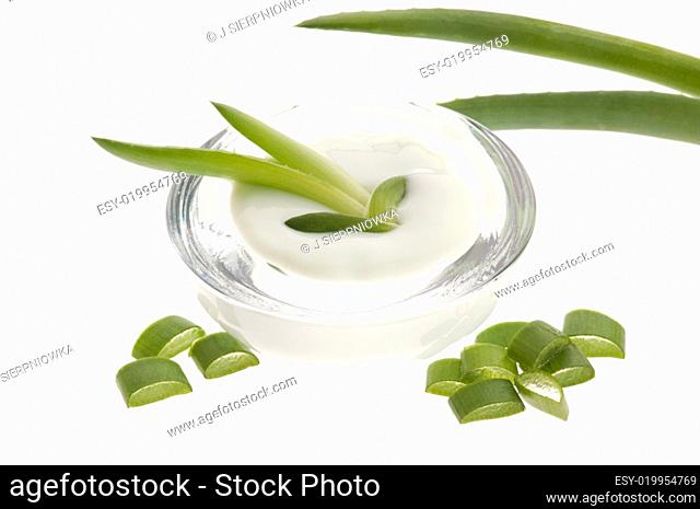 aloe vera - leaves and cream isolated on white background