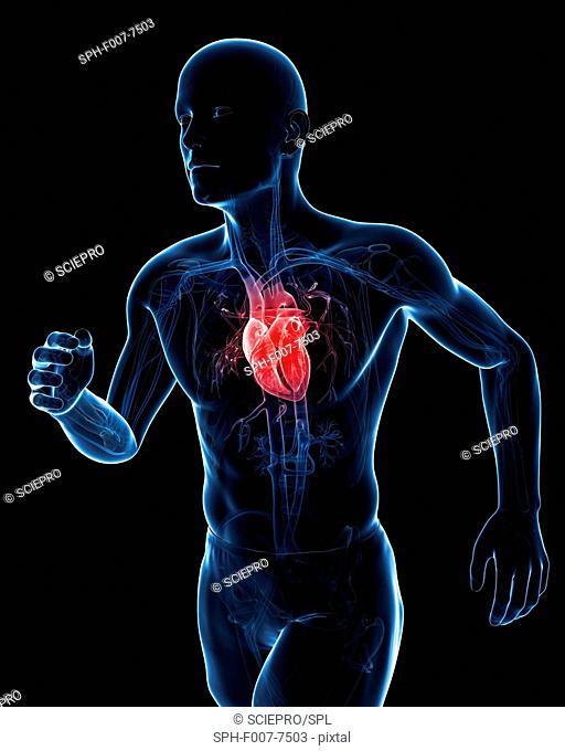 Runner heart, computer artwork