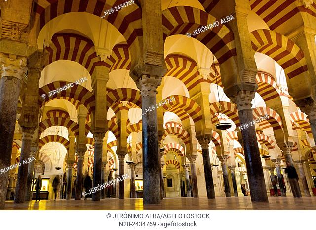Interior columns, Mosque-Cathedral, Cordoba, Andalusia, Spain