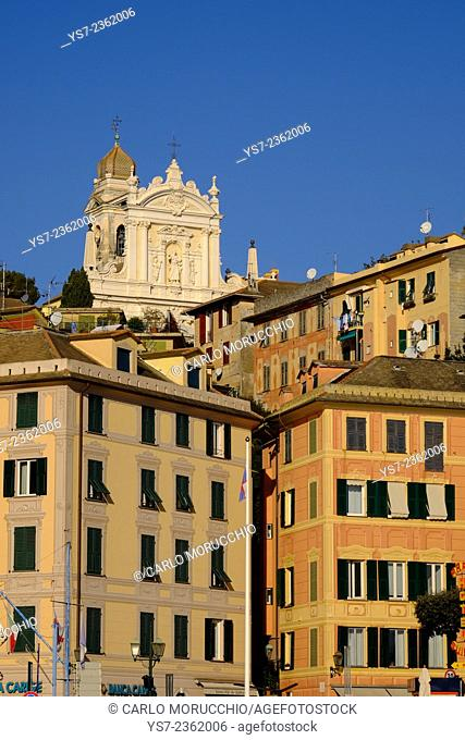 Buildings on the sea front and San Giacomo church in the background, Santa Margherita Ligure, Genova, Liguria, Italy, Europe