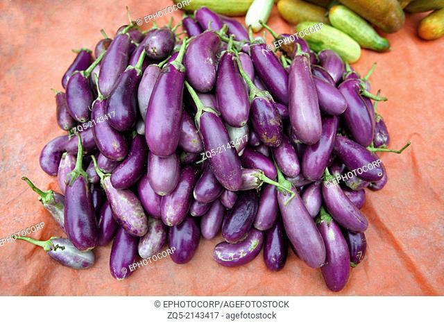 Brinjals or Eggplant (Solanum melongena) on sale. Ashavihar tribal market, Bokaro, Jharkhand, India