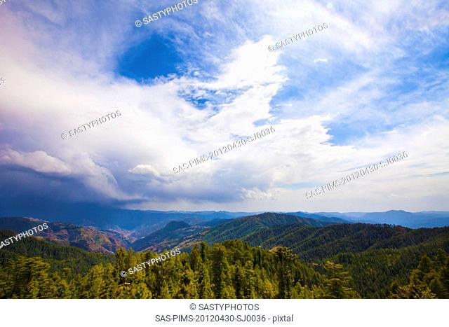 Trees with mountain range in the background, Kufri, Shimla, Himachal Pradesh, India