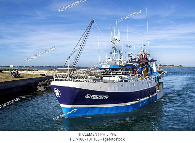 Trawler fishing boat entering the port of Saint-Vaast-la-Hougue, Manche department, Normandy, France