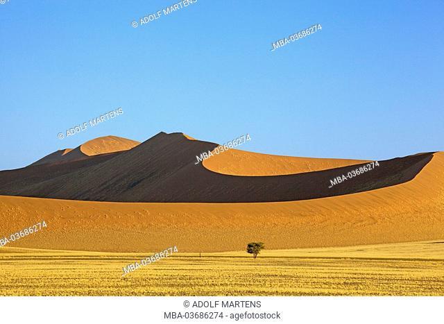 Africa, southern Africa, Namibia, Hardab region, Sossusvlei, Namib Naukluft park, dune scenery