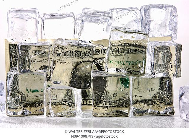 Dollar and ice cubes