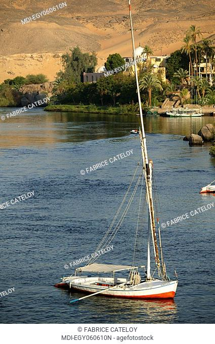 Felouque on the Nile a day without wind