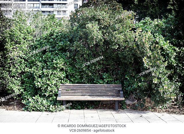 Urban seat covered by vegetation