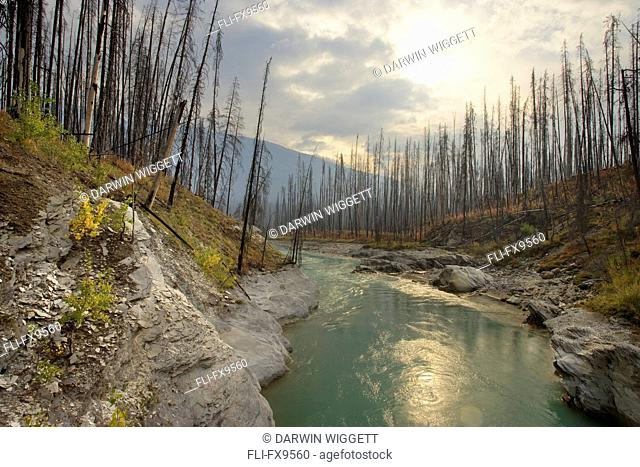 Vermilion River, Kootenay National Park, British Columbia