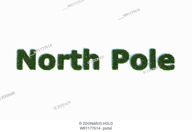 North Pole: Series Fonts out of realistic grass Language E