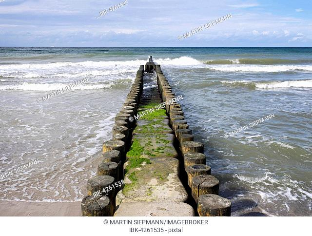 Groyne in Baltic Sea, Ahrenshoop, Fischland, Fischland-Zingst, Mecklenburg-Western Pomerania, Germany