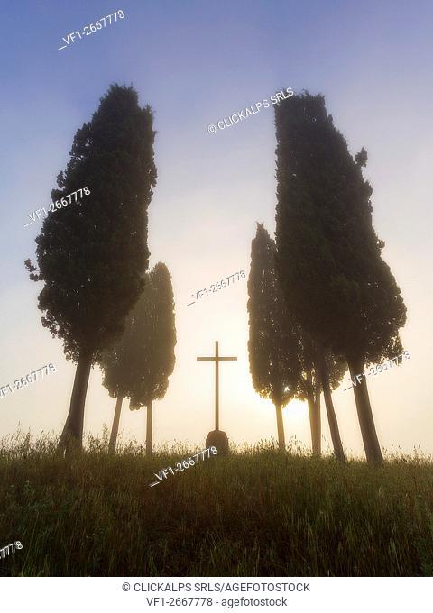 San Quirico d'Orcia, Siena, Tuscan, Italy, cypress in San Quirico