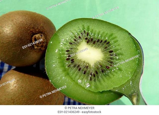 Kiwi - Actinidia deliciosa