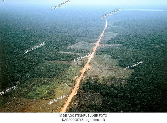 The Trans-Amazonian highway, Amazonas State, Brazil