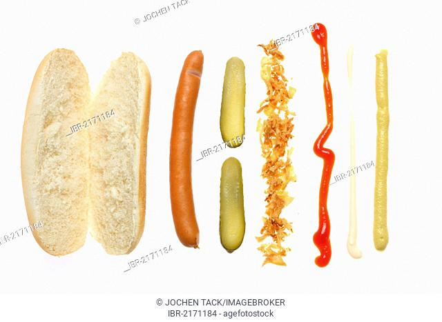 Fast food, ingredients for a hot dog