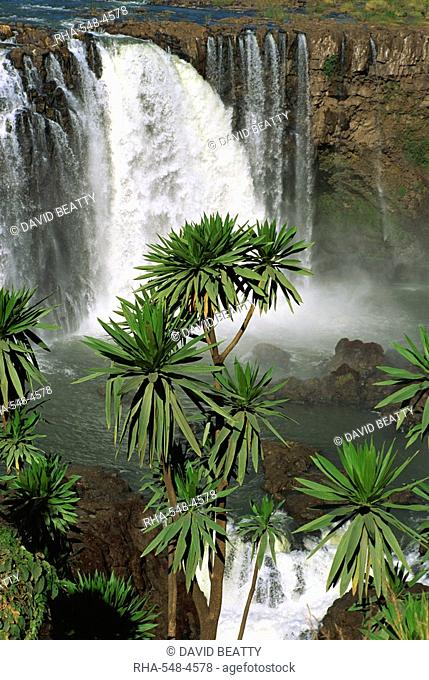 Tisissat Falls on the Blue Nile, Ethiopia, Africa