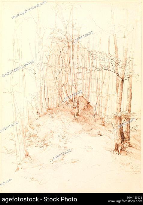 Forest view in the Menterschweige district near Munich. Artist: Heinrich Dreber (German, Dresden 1822-1875 Anticoli di Campagna