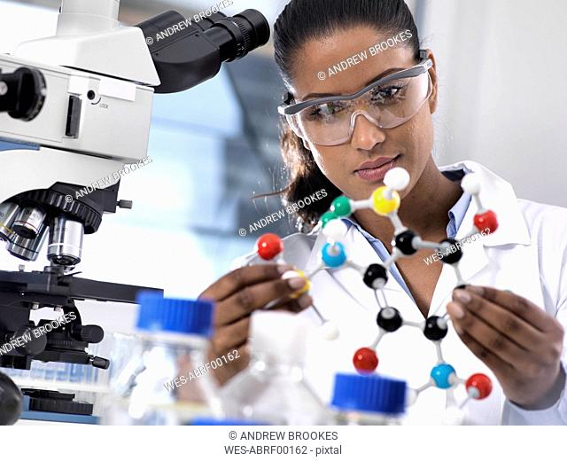 Biotechnology Research, female scientist examining a chemical formula using a ball and stick molecular model in the laboratory