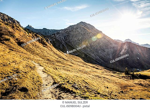 Mountain biking area, Kleinwalsertal, trails below Walser Hammerspitze, Austria