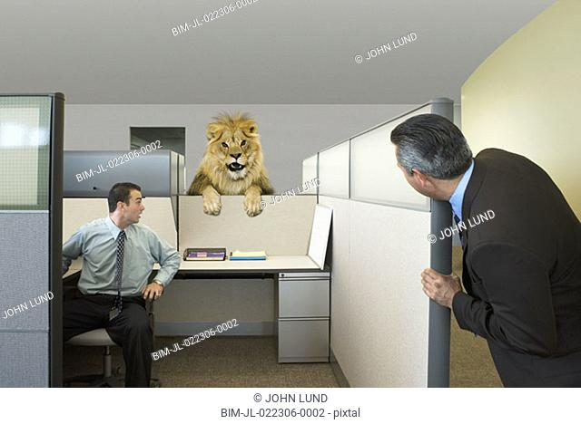 Businessmen looking at lion in office cubicle