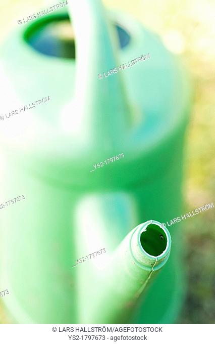 Gardening equipment, green plastic watering can in a garden at summertime