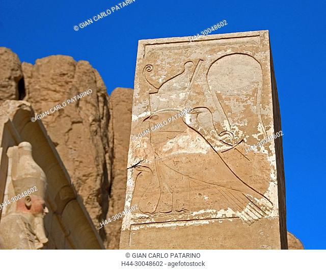 Deir el Bahari, Luxor, Egypt: temple of the queen Hatshepsut (New Kingdom 1567-1080 b.C.) at Deir el Bahari called Djeser-Djeseru: pillar with the sacred falcon