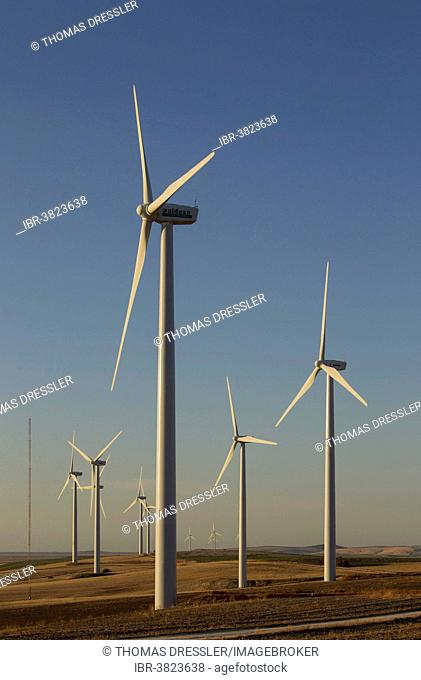 Windmills in the evening light on a wind farm near Sanlúcar de Barrameda, Cádiz province, Andalucía, Spain