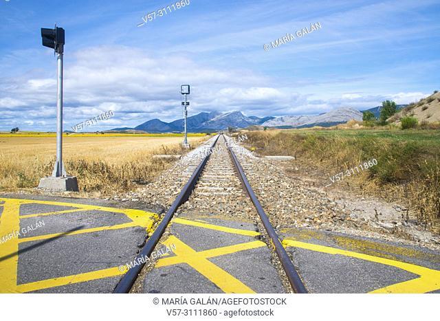 Narrow gauge track. Castrejon de la Peña, Palencia province, Castilla Leon, Spain