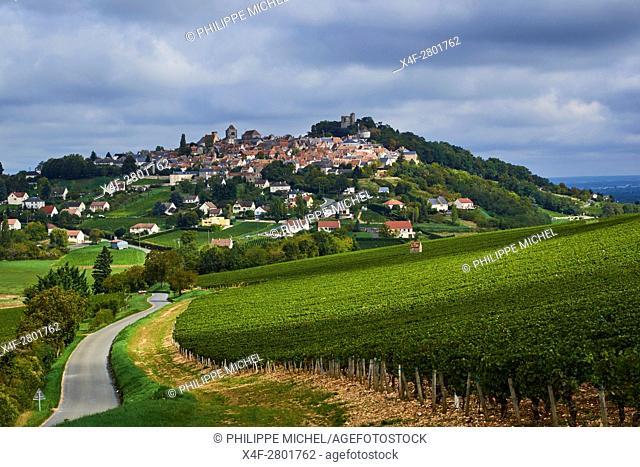 France, Cher 18, Berry, Sancerre village, vineyard