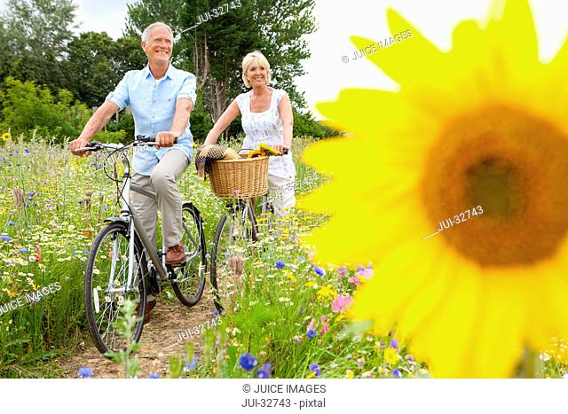 Smiling senior couple riding bicycles on path through field of wildflowers with sunflower in foreground