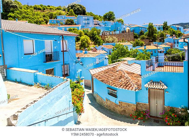 Pueblo Júzcar in blue, the Serrania de Ronda, Malaga province, Andalusia, Spain, Europe