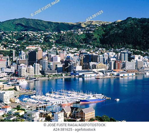 Wellington. North Island, New Zealand