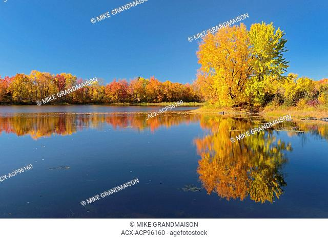 Vermilion River reflection in autumn Near Naughton Ontario Canada