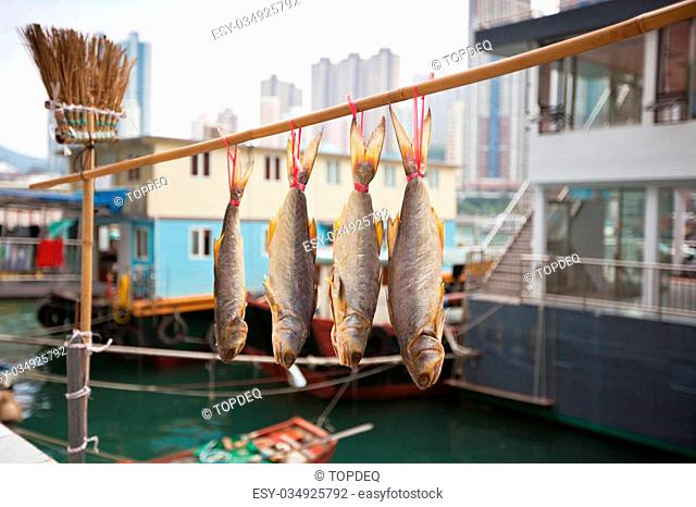 Traditional fishing trawlers in the Aberdeen bay, famous floating village in Hong Kong