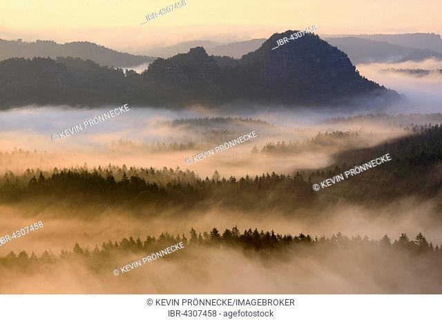 View from Kleiner Winterberg to Lorenzsteine, Elbe Sandstone Mountains, Saxon Switzerland, Saxony, Germany