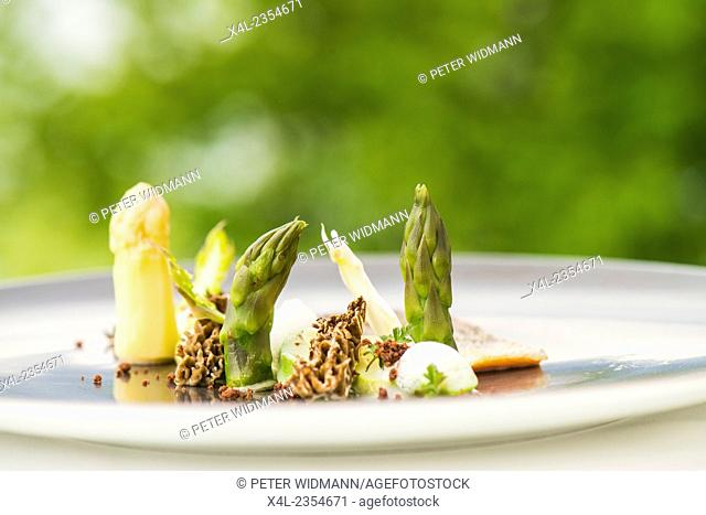 Food on plate, asparagus, Austria