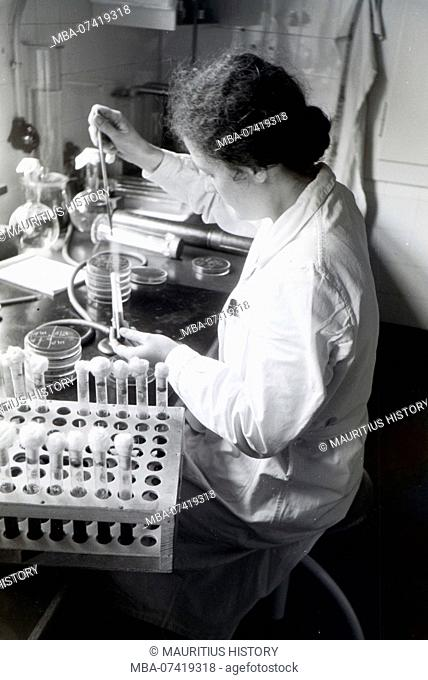 A lab assistant examining the microorganisms in a Petri dish in the laboratory of the Behringwerke, Marburg, Germany 1930s