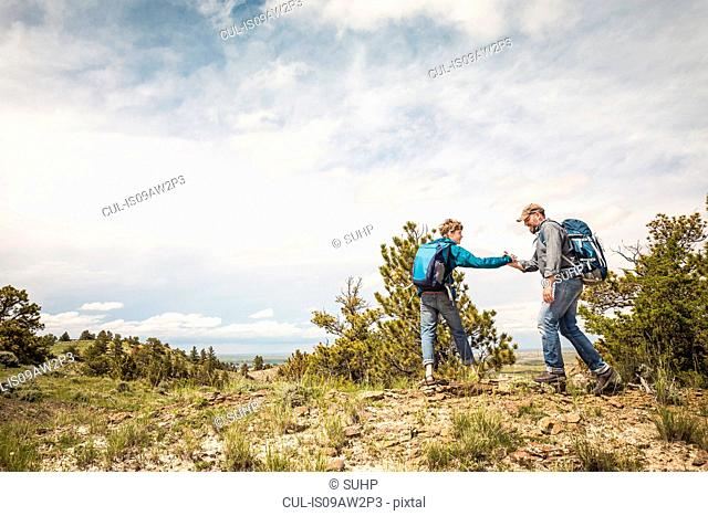Father and teenage son shaking hands on hiking trip, Cody, Wyoming, USA