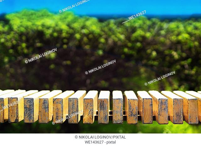 Horizontal park bench bokeh background